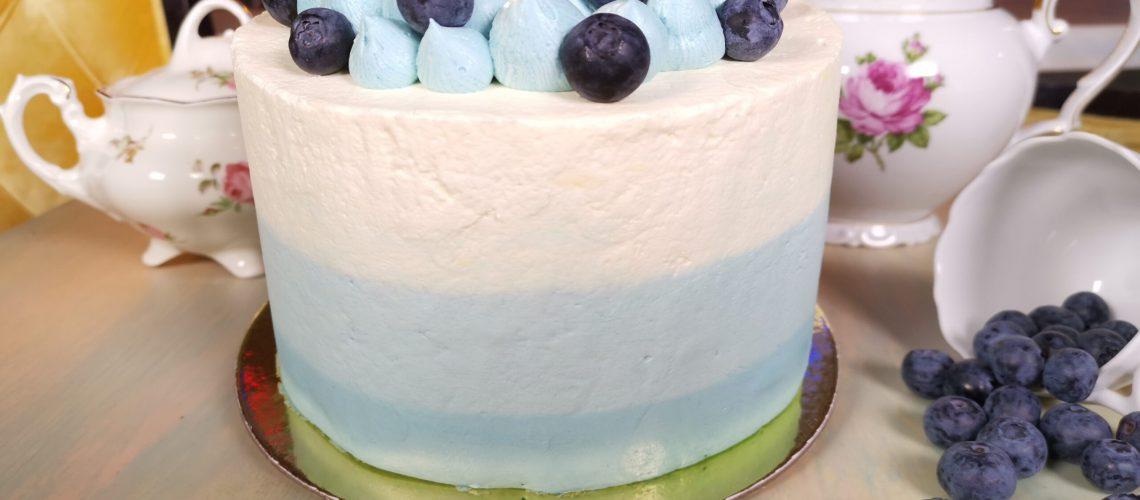 Blueberry Cheesecake(1)